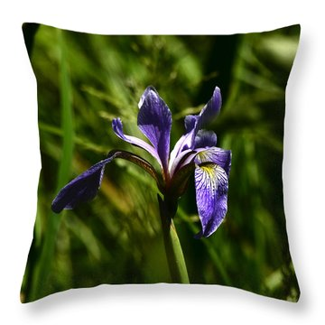 Beauty In The Grass Throw Pillow