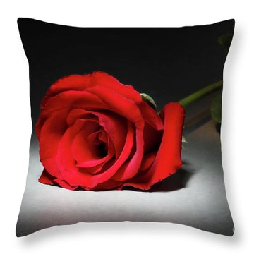 Beauty In The Spotlight Throw Pillow