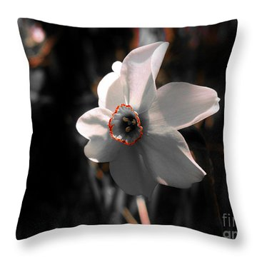 Throw Pillow featuring the photograph Beauty In The Woods by Sherman Perry