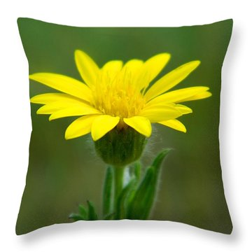 Beauty In Yellow Throw Pillow by Ester  Rogers