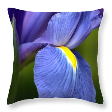 Throw Pillow featuring the photograph Beauty Of Iris by Joy Watson