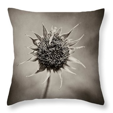 Beauty Of Loneliness Throw Pillow