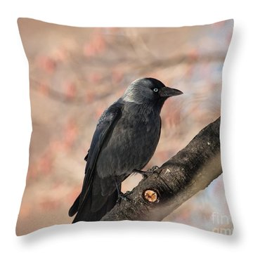 Throw Pillow featuring the photograph Beauty Of Nature by Rose-Maries Pictures