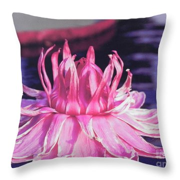 Beauty Of Pink At The Ny Botanical Gardens Throw Pillow by Chrisann Ellis