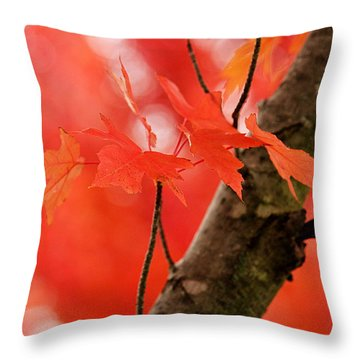 Throw Pillow featuring the photograph Beauty Of Red by Viviana  Nadowski