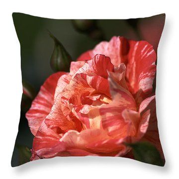 Throw Pillow featuring the photograph Beauty Of Rose by Joy Watson