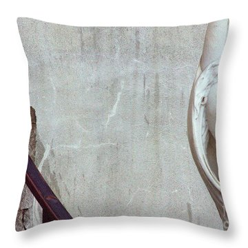 Beauty Of Rust Throw Pillow