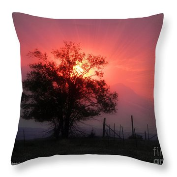 Beauty Of Sunset Throw Pillow