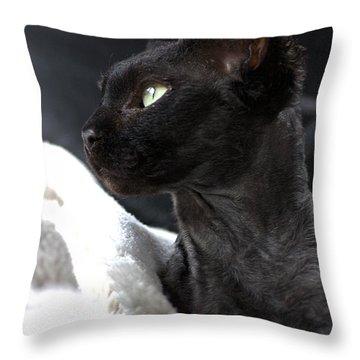Beauty Of The Rex Cat Throw Pillow