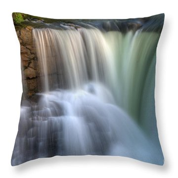 Beauty Of Water Throw Pillow by Bob Christopher