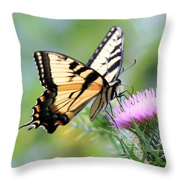 Beauty On Wings Throw Pillow by Geoff Crego