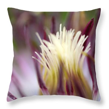 Beauty Remains Throw Pillow