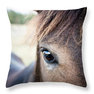 Beauty Throw Pillow by Swift Family