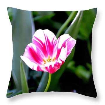 Beauty Throw Pillow by Tara Potts