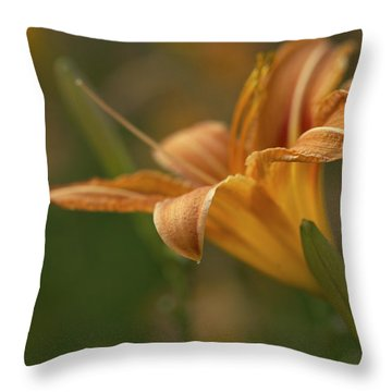 Beauty - Tiger Lily Art Print Throw Pillow by Jane Eleanor Nicholas