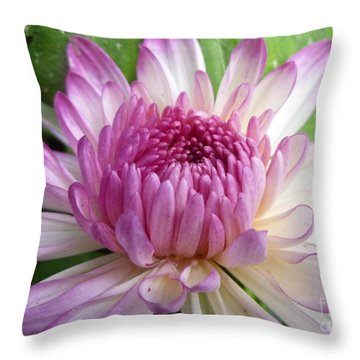 Beauty With Double Identity Throw Pillow