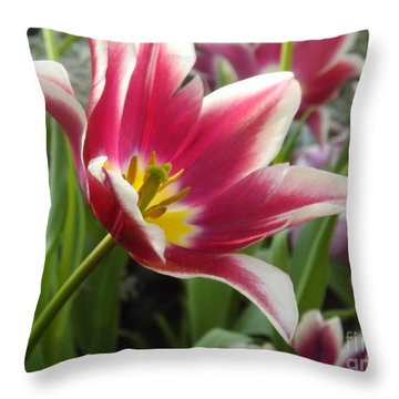 Beauty Within Throw Pillow by Lingfai Leung