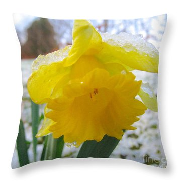 Beauty Within Throw Pillow by Suzanne Oesterling