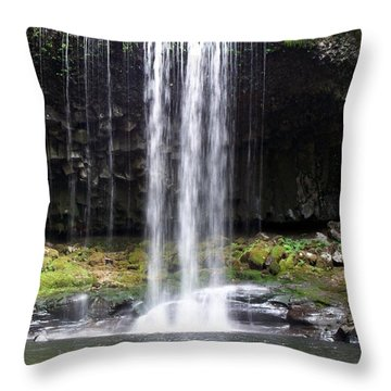 Throw Pillow featuring the photograph Beaver Falls by Chalet Roome-Rigdon