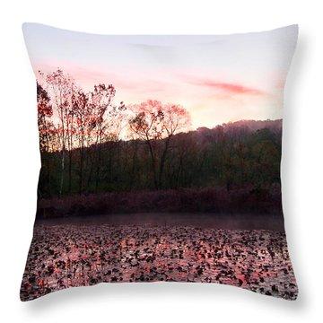 Beaver Marsh Throw Pillow by David Yunker