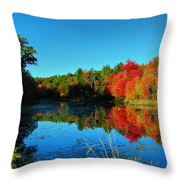 Beaver Pond Foliage Throw Pillow