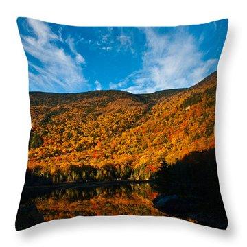 Beaver Pond White Mountain National Forest Throw Pillow