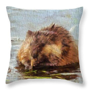 Beaver Portrait On Canvas Throw Pillow by Dan Sproul