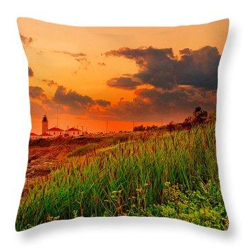 Beavertail Spectacular- Beavertail State Park Rhode Island Throw Pillow