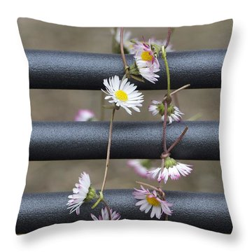 Throw Pillow featuring the photograph Because I Love Her 2 by Colleen Williams
