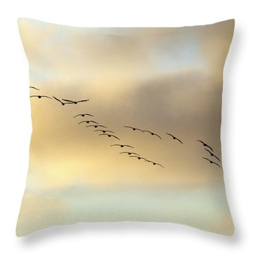 Because We Can Throw Pillow by Joe Schofield