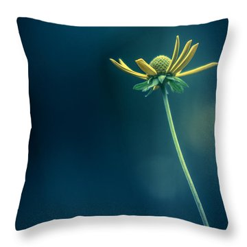 Because You Taught Me Who I Am And I Am Loved Throw Pillow
