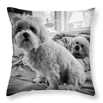 Bed Buddies Throw Pillow by Natasha Marco