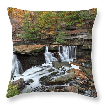 Throw Pillow featuring the photograph Bedford Viaduct Waterfall by Daniel Behm