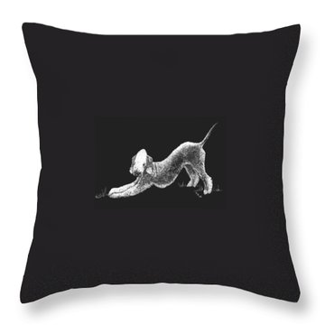 Throw Pillow featuring the drawing Bedlington Terrier by Rachel Hames