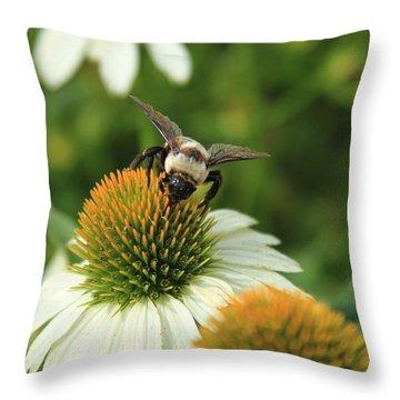 Bee 7 Throw Pillow by Reid Callaway