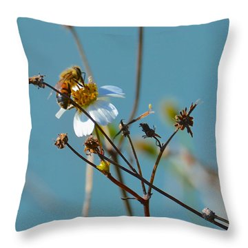 Throw Pillow featuring the photograph Bee And A White Flower by AnnaJo Vahle