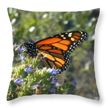 Bee And Monarch  Throw Pillow