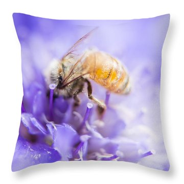 Bee Dream Throw Pillow by Caitlyn  Grasso