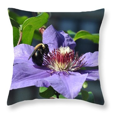 Bee Drinking From Purple Clematis Throw Pillow by Diane Lent