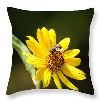 Bee Flower Throw Pillow