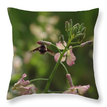 Pink Mustard Flower Throw Pillow by Adria Trail