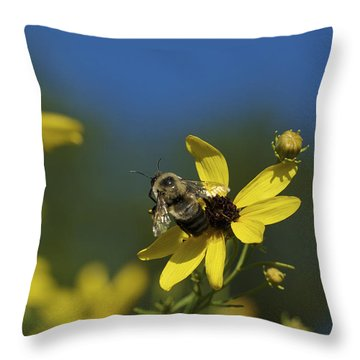 Throw Pillow featuring the photograph Bee Good - Bee On Yellow Wildflowers by Jane Eleanor Nicholas