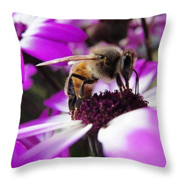 Bee Happy Throw Pillow by Norma Brock