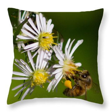 Bee Harvest Throw Pillow