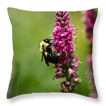 Bee Heaven Throw Pillow