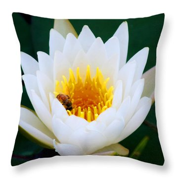Bee In A Lily  Throw Pillow