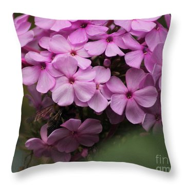 Bee In The Bouquet Throw Pillow