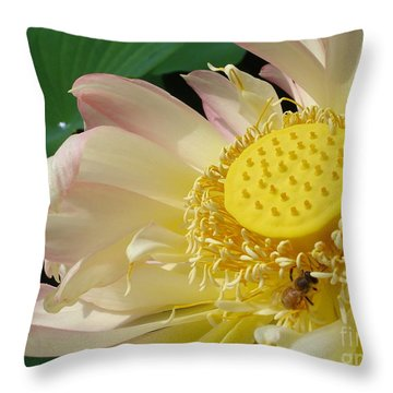 Throw Pillow featuring the photograph Bee by Jane Ford