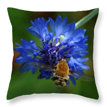 Throw Pillow featuring the photograph Bee by Leticia Latocki