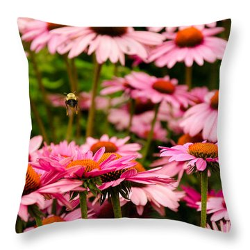 Bee Line At High Line Nyc Throw Pillow by Maureen E Ritter